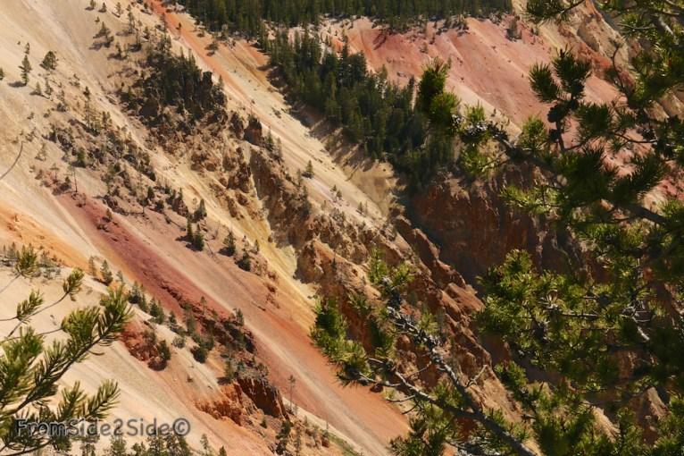 Grand Canyon Yellowstone 3