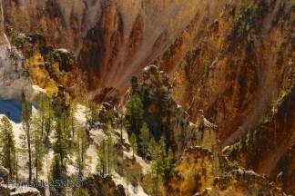 Grand Canyon Yellowstone 8
