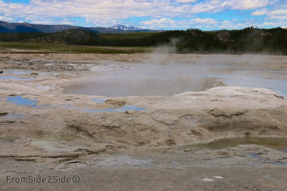 celestine Spring Yellowstone