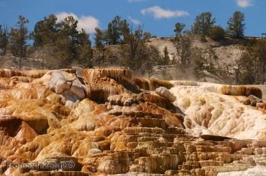 yellowstone par le nord 11