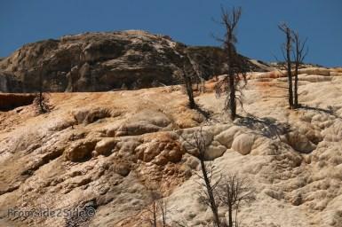 yellowstone par le nord 16