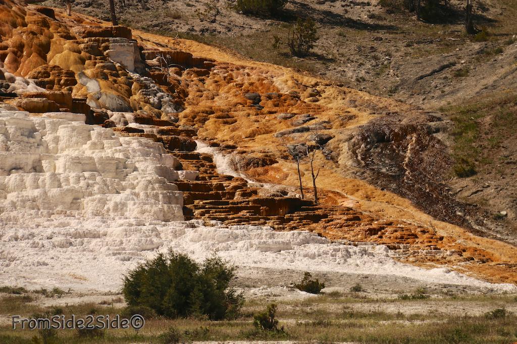 yellowstone par le nord 20