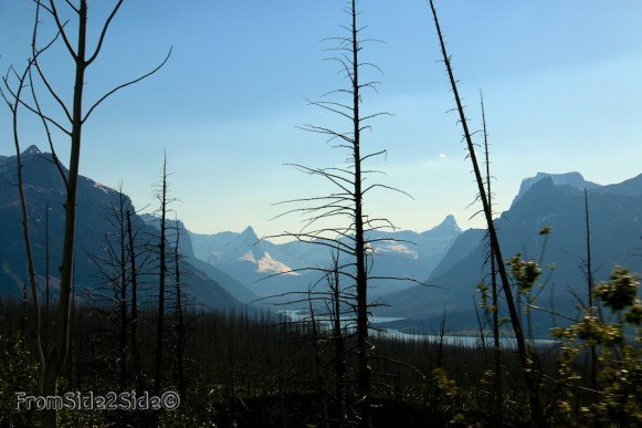 Glacier National Park 16