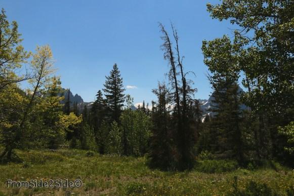 Glacier National Park 24