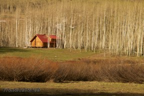 crested-butte-photo 3