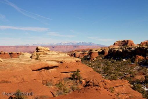 Canyonlands-Needles 18