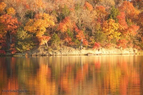 automne 1 (1)