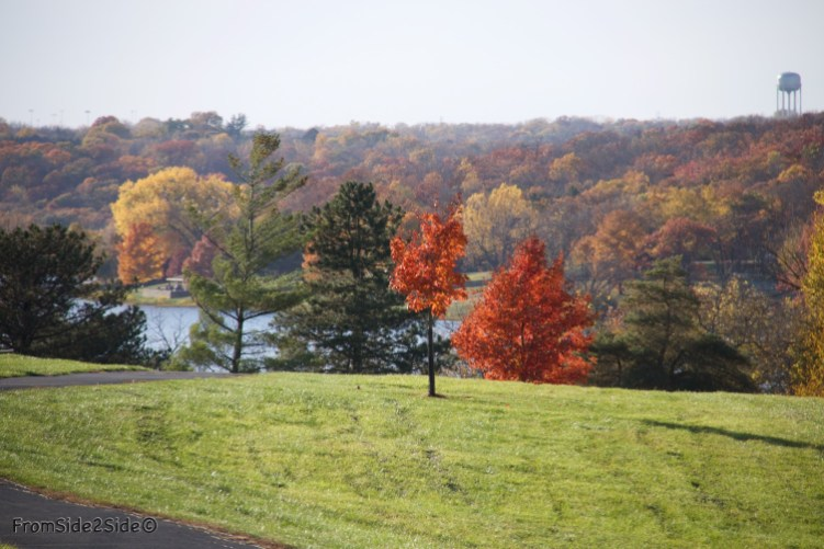 automne-SM-park 4