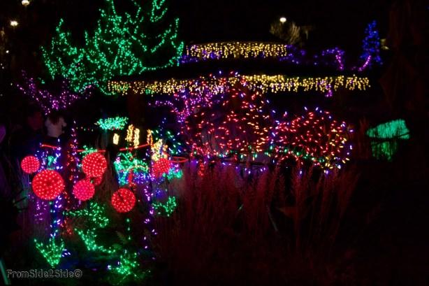 Fort Collins Noël 16