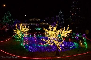 Fort Collins Noël 20