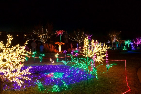 Fort Collins Noël 21