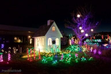 Fort Collins Noël 4
