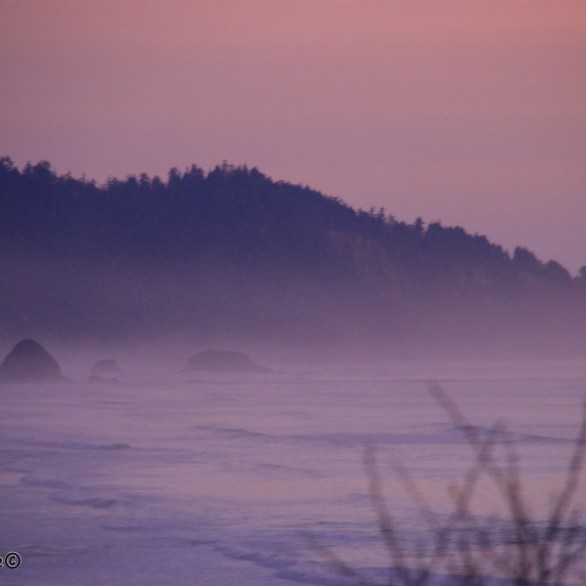 Oregon Coasts 3