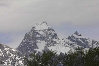 Grand Teton 6 (1)