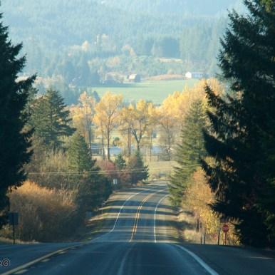 Oregon-coast 1