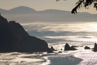 Oregon-coast 13