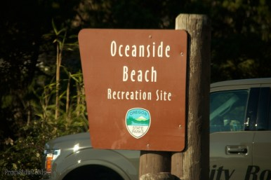 Oregon-coast 23