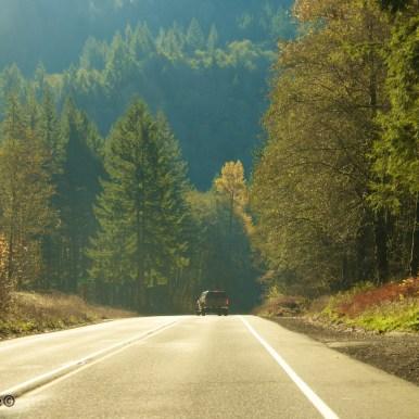 Oregon-coast 3