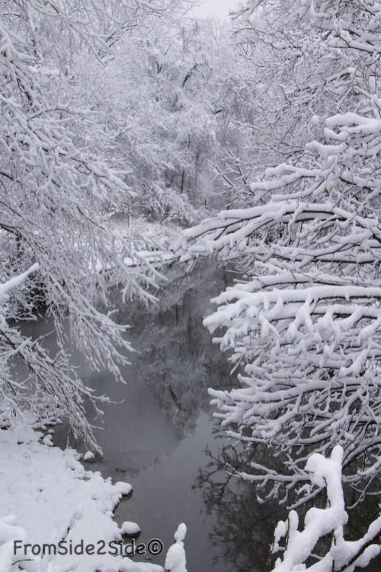 neige-jan-19 6