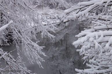 neige-jan-19 7