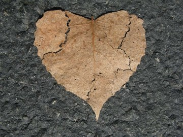 heart-742712_1280