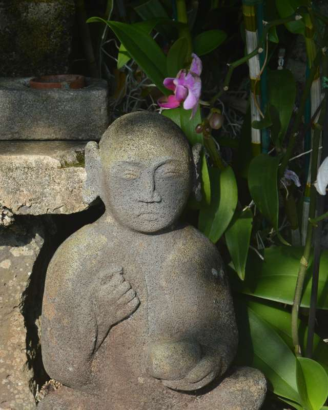 Altar Medicine Buddha