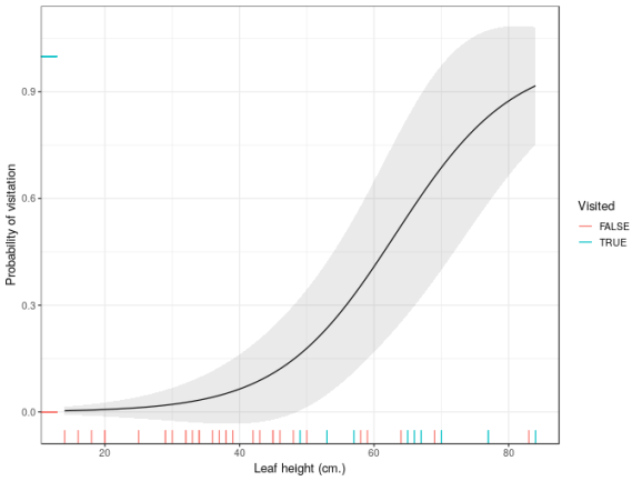 Estimated probability of visitation as a function of leaf height with an incorrectly-computed 95% confidence interval superimposed. Notice the interval exceeds the probability limits, 0 and 1.