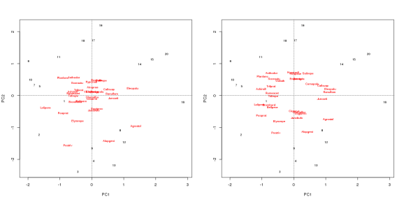 PCA of the Dutch dune meadow data set. Both biplots are drawn using species scaling, but the one on the right standardizes the species scores.