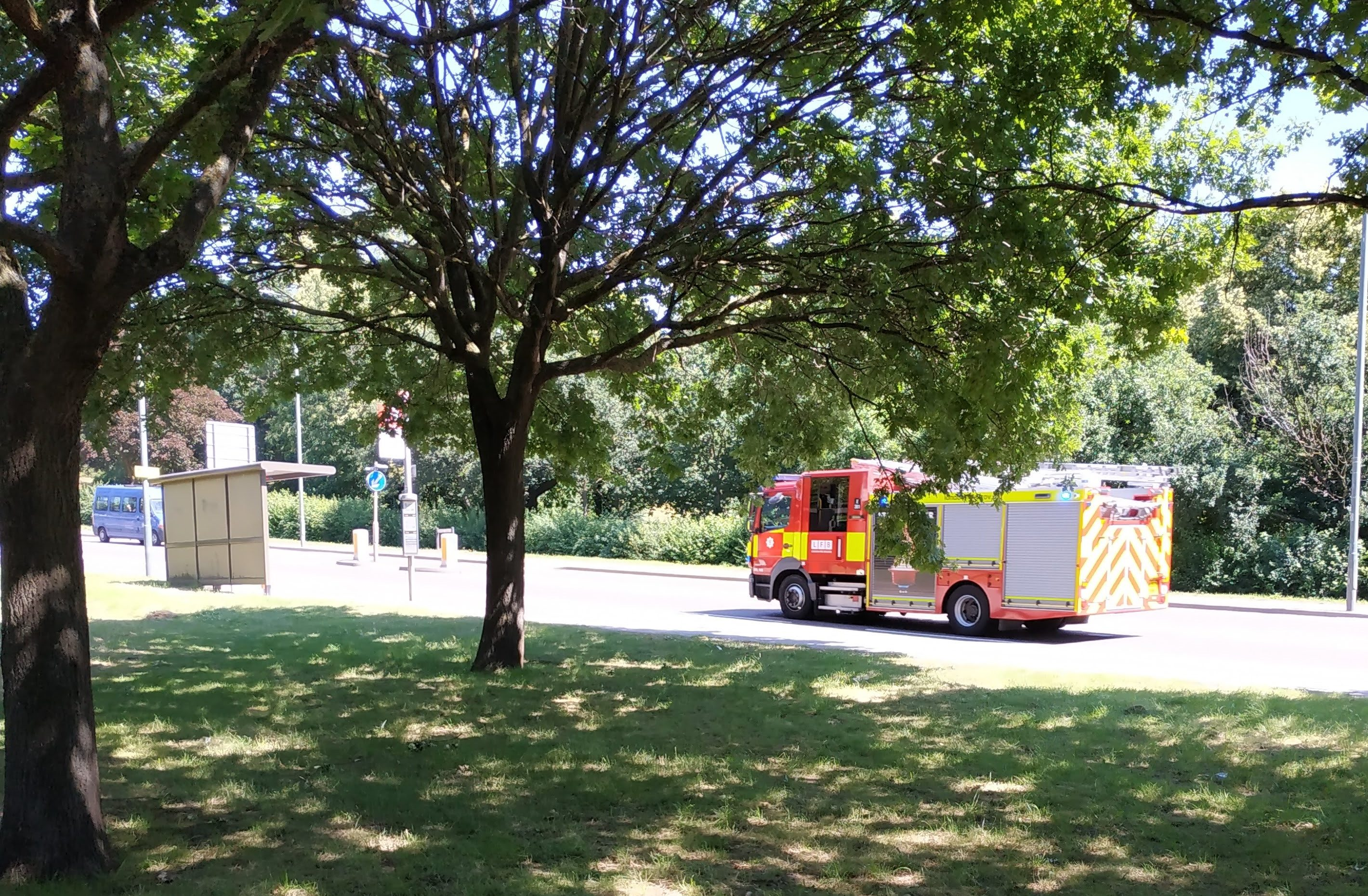 Cyclist dies after traffic collision in Bexley this morning