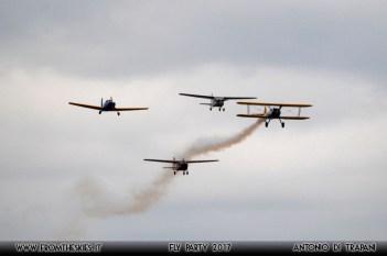 Fly Pary 2017 - 2 - (41)