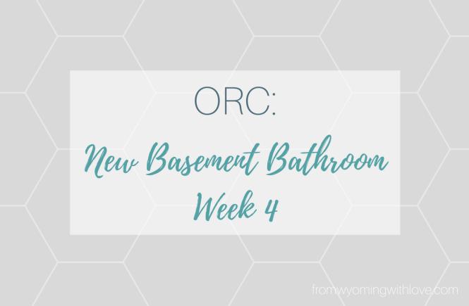 orc-new-basement-bathroom-week-4