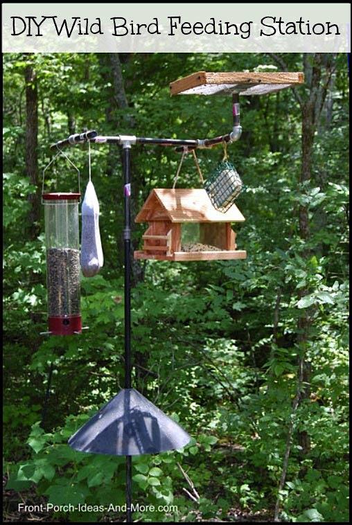 Wild Bird Feeding Station   Backyard Bird Feeding   Front ... on Birds Backyard Landscapes id=33491