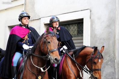 Cavalli-Infiocchettati-2015-foto-Fabrizi-02