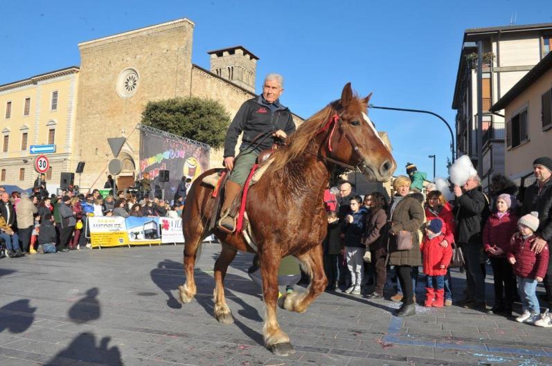 [29.01.2017] Cavalli infiocchettati - Rievocazione Storica MAS_5319