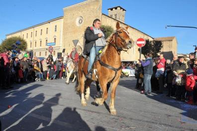 [29.01.2017] Cavalli infiocchettati - Rievocazione Storica MAS_5370