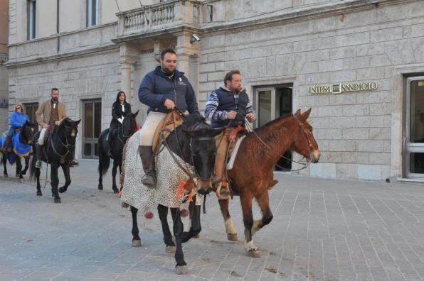 [29.01.2017] Cavalli infiocchettati - Rievocazione Storica MAS_6252