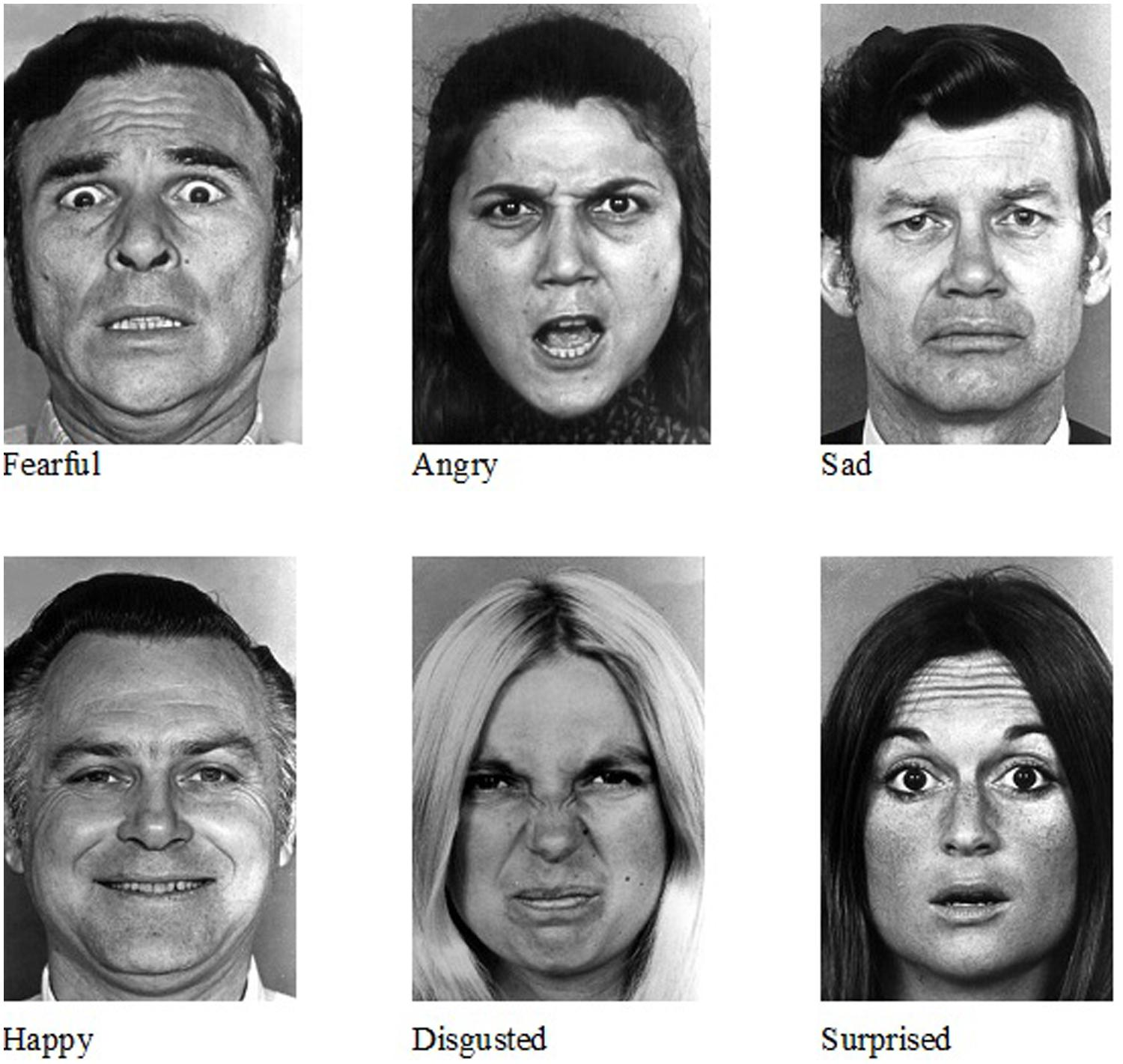 Ekman And Friesen Facial Expressions