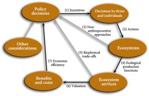 "Frontiers | Soil ""Ecosystem"" Services and Natural Capital: Critical Appraisal of Research on"