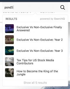 SearchIQ Results Example