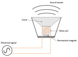 Simple Diagram of a Speaker