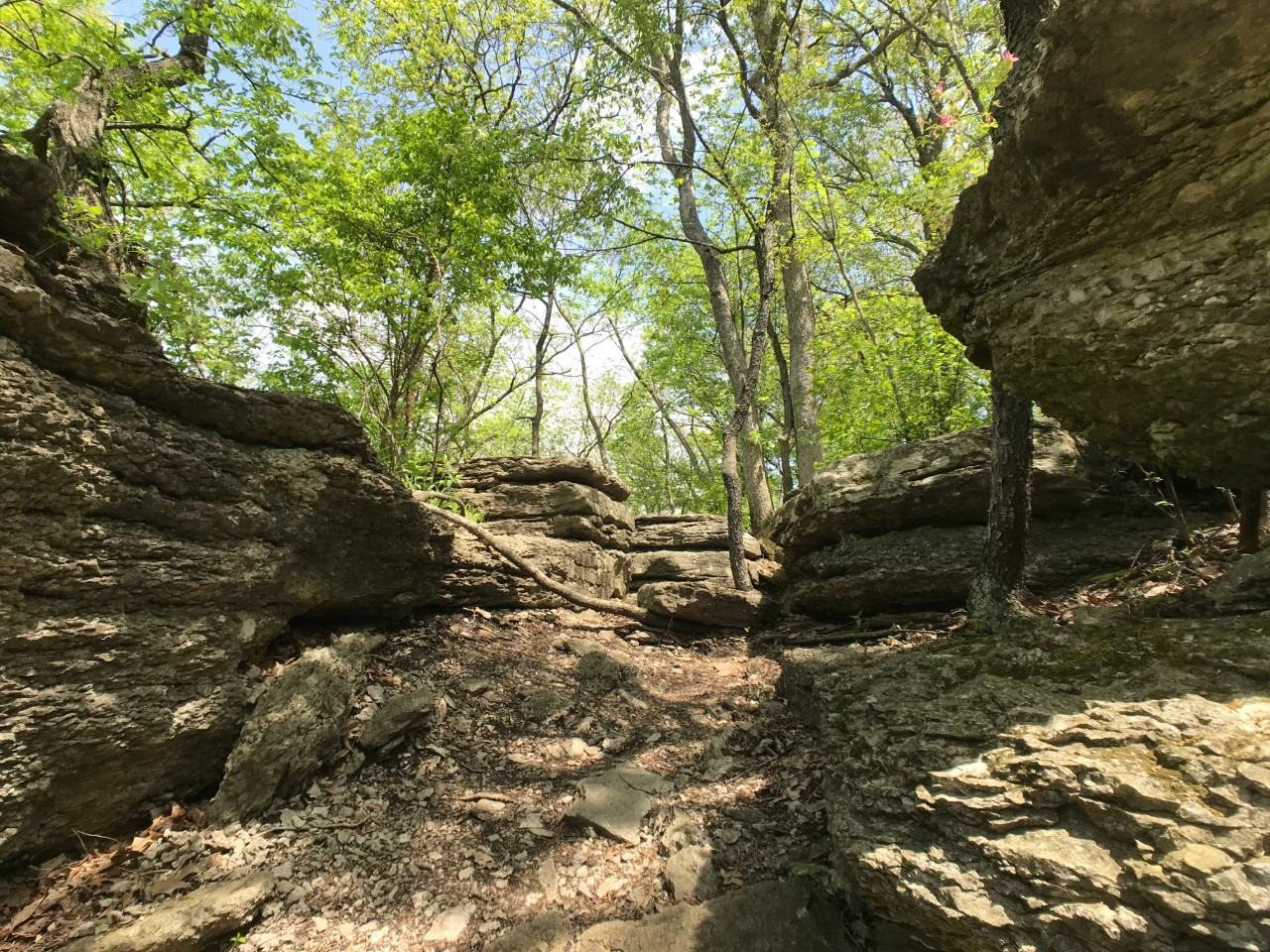Bethany Falls Trail Limestone