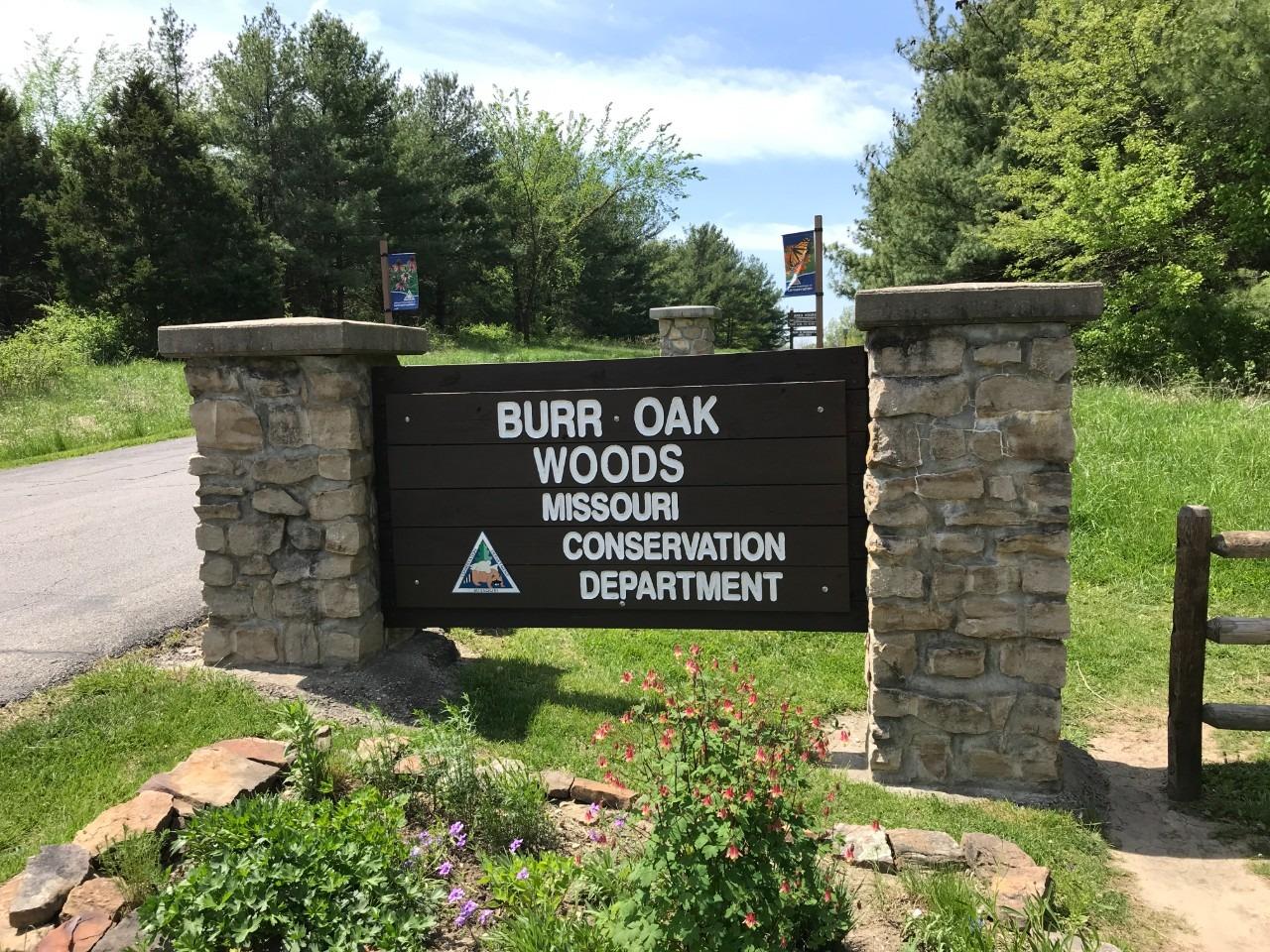 Burr Oak Woods Conservation Area