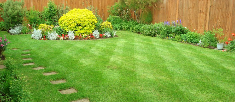 Mowing Leaves Good Your Lawn