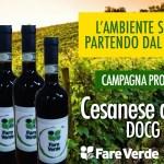 Piglio (FR) – Fare Verde lancia iniziativa per promuovere il vino Cesanese e i prodotti tipici locali.