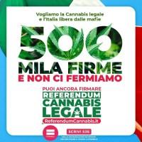 Referendum cannabis, raggiunto il traguardo delle 500mila firme.