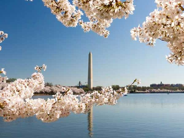 Where to Stay in Washington, DC, home of some amazing monuments & museums