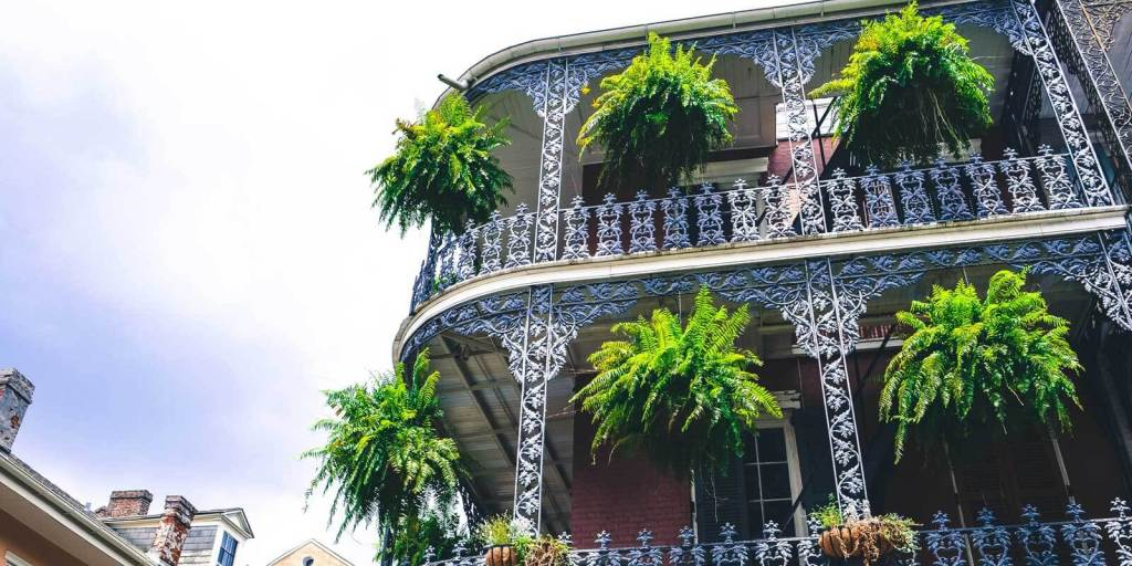 Classic New Orleans French Quarter building with wrought iron balcony and hanging plants.