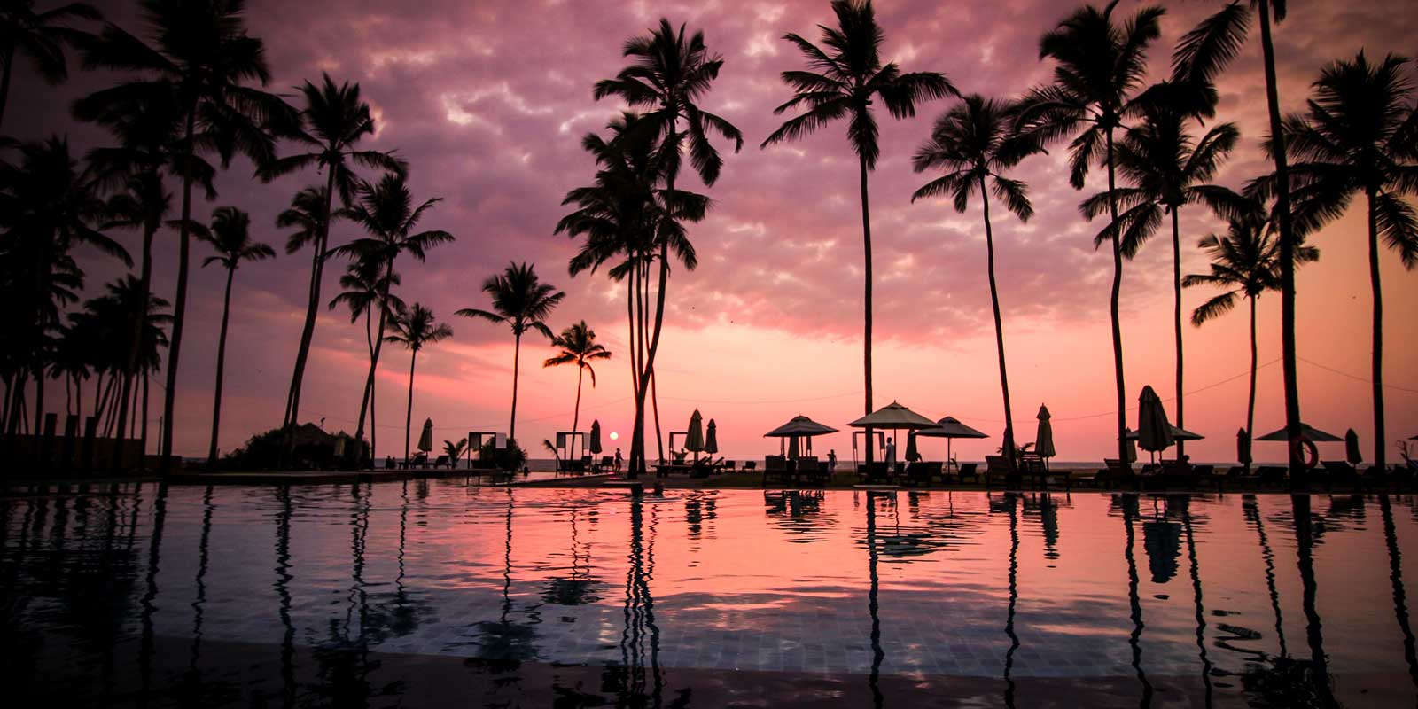 View from a resort pool in Sri Lanka with red and orange sunset and black silhouetted palm trees.