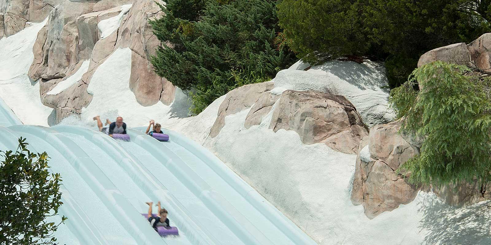 Photo of 3 people racing on the Toboggan Racers water slide at Blizzard Beach.
