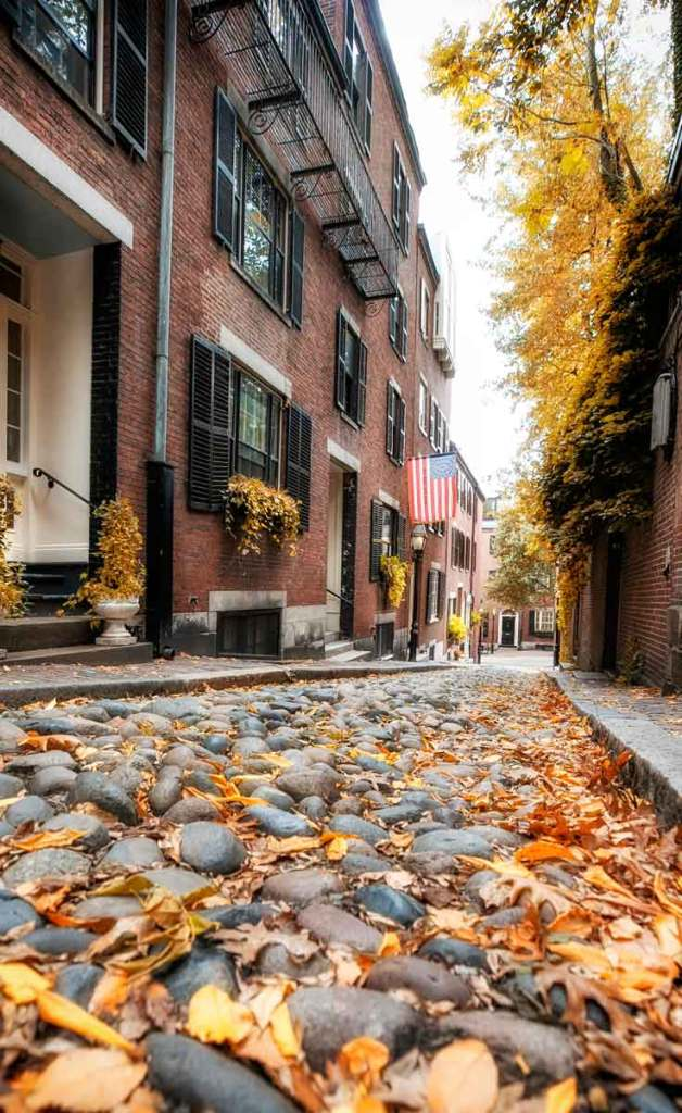 Cobblestone street with orange leaves on the ground amidst brick row houses.